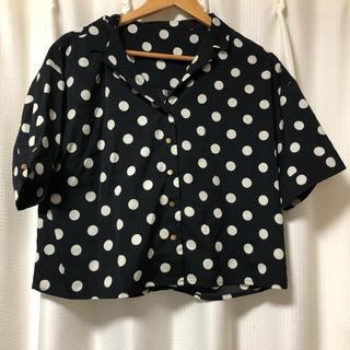 ミスティウーマン(mysty woman)のドットTシャツ(Tシャツ(半袖/袖なし))