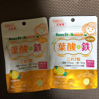 葉酸+鉄(その他)