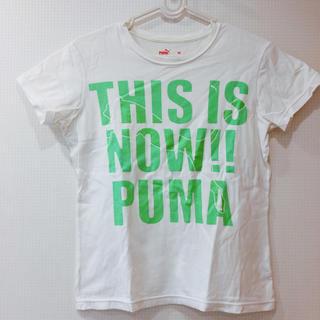 PUMA - 新品同様 PUMA 半袖 Tシャツ 白 ブランド スポーツウェア 冬 レディース