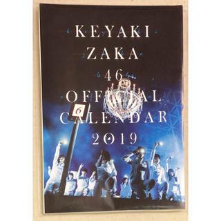 ケヤキザカフォーティーシックス(欅坂46(けやき坂46))の欅坂46 公式壁掛けカレンダー 2019年版 早期予約特典 ポストカードセット (女性アイドル)