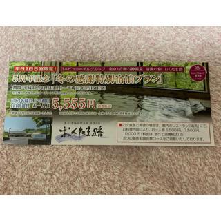 日本ビューホテル グループ 割引券(宿泊券)
