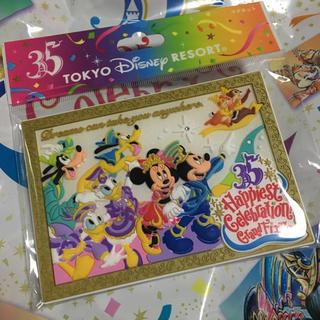 Disney - ディズニー35周年グランドフィナーレ マグネット