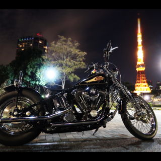 ハーレーダビッドソン(Harley Davidson)のHarley-Davidson 96'fxsts(車体)