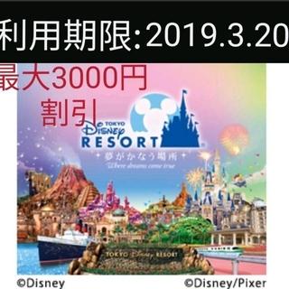 ディズニー(Disney)のディズニー パスポート(遊園地/テーマパーク)