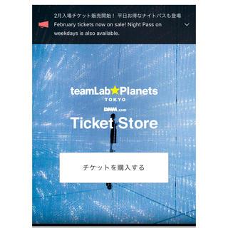 yy様  チームラボ 本日チケット 14:00〜14:30(遊園地/テーマパーク)