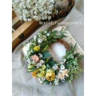 春が待ち遠しい**ミモザと秋色紫陽花の三日月wreath*.ドライフラワーリース(リース)