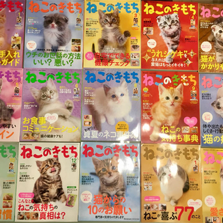 セール!ねこのきもち 勢揃い 16冊◆3冊セットならバラ売り可能 まとめ売り(趣味/スポーツ)