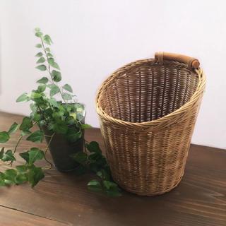 ラタン かご 筒形 Sサイズ ゴミ箱 鉢カバー ダストボックス 屑入れ 収納(バスケット/かご)