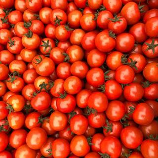 ミニトマト1キロ