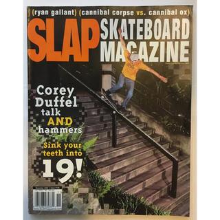 アンチヒーロー(ANTIHERO)のSLAP スケートボードマガジン 2002年 11月号(スケートボード)