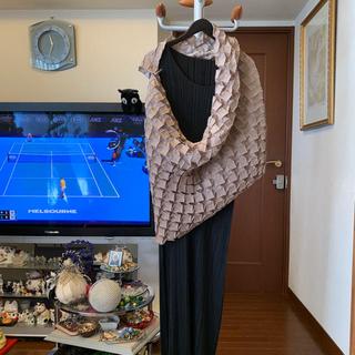 イッセイミヤケ(ISSEY MIYAKE)のイッセイミヤケ 2015年 コレクションライン モードなストールケープ(その他)