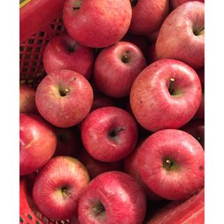 減農薬✨ふじ 色良し 小さな黒星傷など訳あり3.5kバラ詰め(フルーツ)