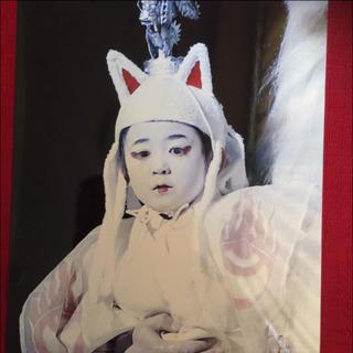 市川海老蔵  堀越かん玄君 七月大歌舞伎 公式大判お写真♡素晴らしい(伝統芸能)