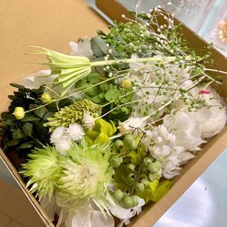 プリザーブドフラワー ドライフラワー 花材セット
