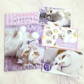 まるごとホイちゃん展 ホイふぉとアルバム フォトアルバム ホイちゃん ねこ休み展(キャラクターグッズ)