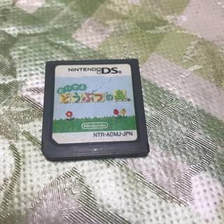 ニンテンドーDS - どうぶつの森 DS