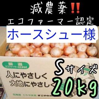 ホースシュー様専用(野菜)