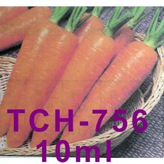 ラスト1:人参の種 タキイ「TCH-756」 約10ml(約250粒)(野菜)