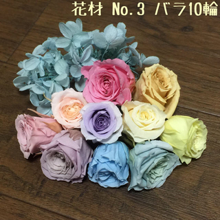 花材 バラ10輪セット No.3 新年セール価格♪