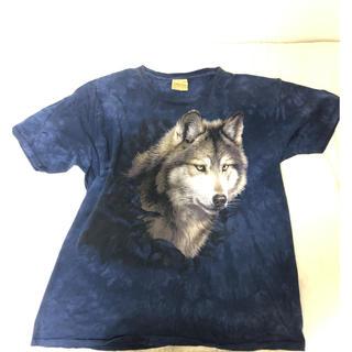ドッグタウン(DOG TOWN)のシベリアンハスキー  ビッグtシャツ(犬)