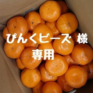 【ぴんくビーズ 様 専用】和歌山県産 中生みかん 10㎏(フルーツ)