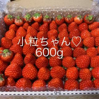 小粒ちゃん♡さがほのか苺600g●いちご イチゴ