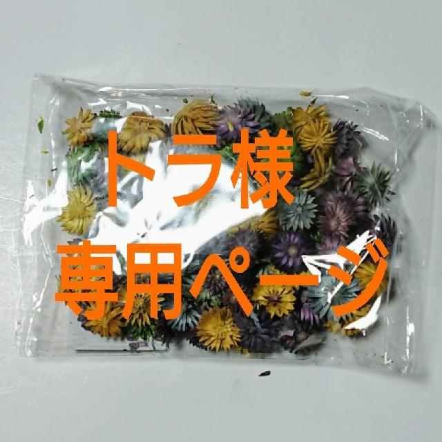 トラ様専用ページ ハンドメイドのフラワー/ガーデン(ドライフラワー)の商品写真