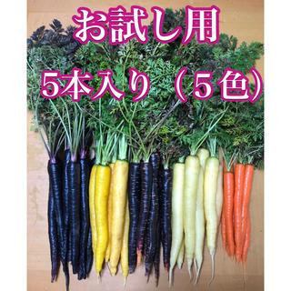 彩りフルーツにんじん。お試し5本入り5色。無農薬野菜