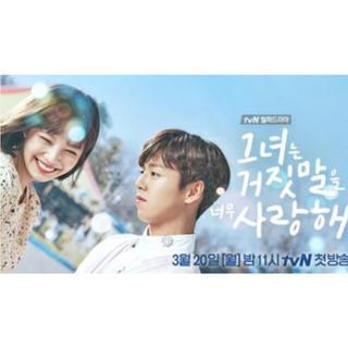 velvet - 韓国ドラマ RedVelvetジョイ出演 彼女は嘘を愛しすぎてる (中古DVD)