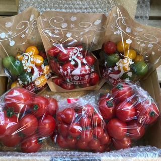 ミニトマト&フルティカトマトセット1.8kg(野菜)
