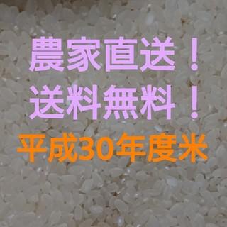 愛媛県産ヒノヒカリ30㎏(米/穀物)