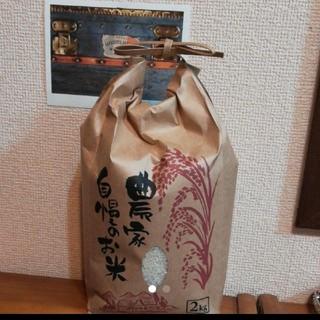 新米 新潟のお米コシヒカリ2kg(米/穀物)
