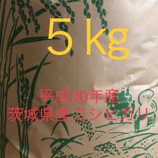 コシヒカリ 玄米  平成30年産5㎏(米/穀物)