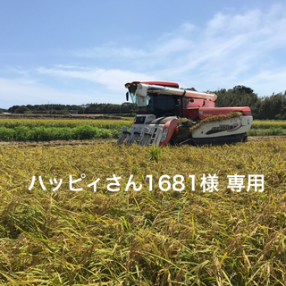 愛知県産コシヒカリ 5㎏(米/穀物)