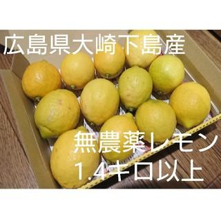 広島県大崎下島産 無農薬レモン 1.4キロ