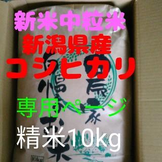 たけし様専用(米/穀物)