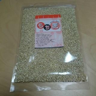 もち麦(米/穀物)
