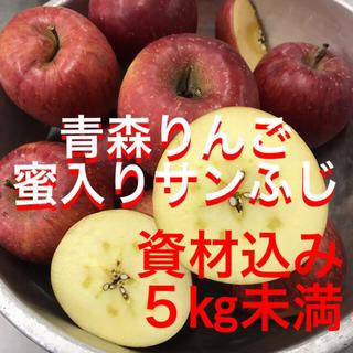 青森県産りんご サンふじ 送料込み 5%クーポン対象