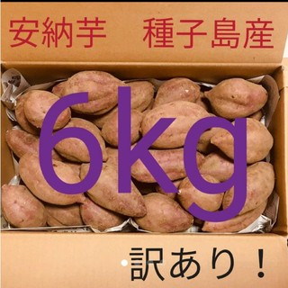 訳あり安納芋 6キロ 送料無料 種子島産 完熟 さつまいも(野菜)