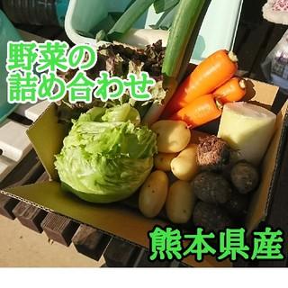 残り僅か!レタス(5個)と野菜の詰め合わせ3種類(野菜)
