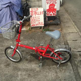 引き取り限定、加古川市迄、BIJIN16インチ折りたたみ自転車、変速1×1赤系(自転車本体)