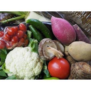農家直売 野菜詰合せ 80サイズ 送料込み 熊本産(野菜)