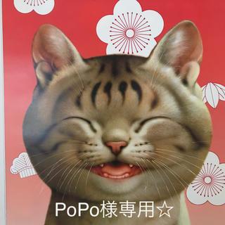 PoPo様専用ページ☆(その他)