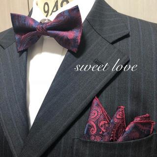 蝶ネクタイ ポケットチーフ2点セット/メンズ/ボルドーペイズリー(ネクタイ)
