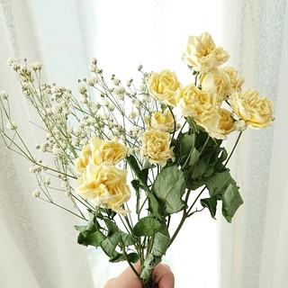 fururu様専用ページ☆薔薇(クリームイエロー)かすみ草セット ドライフラワー(ドライフラワー)