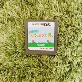 Nintendo DS ソフト おいでよ どうぶつの森