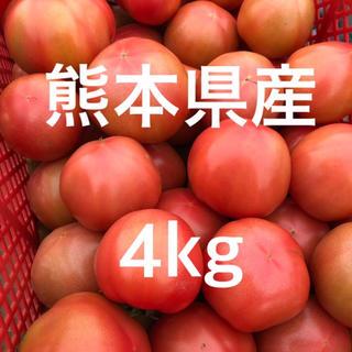 熊本県産トマト 4kg 訳あり(野菜)