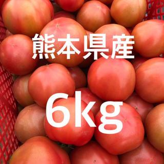 熊本県産トマト 6㎏ 訳あり(野菜)