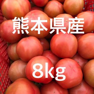 熊本県産トマト 8kg 訳あり(野菜)