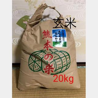 あいがも農法 無農薬 玄米20キロ(米/穀物)